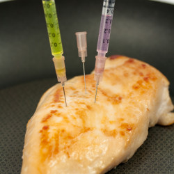 Chicken breast in a pan with needles inserted