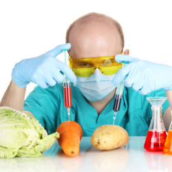Researcher injecting chemicals into vegetables